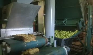 Presse des pommes