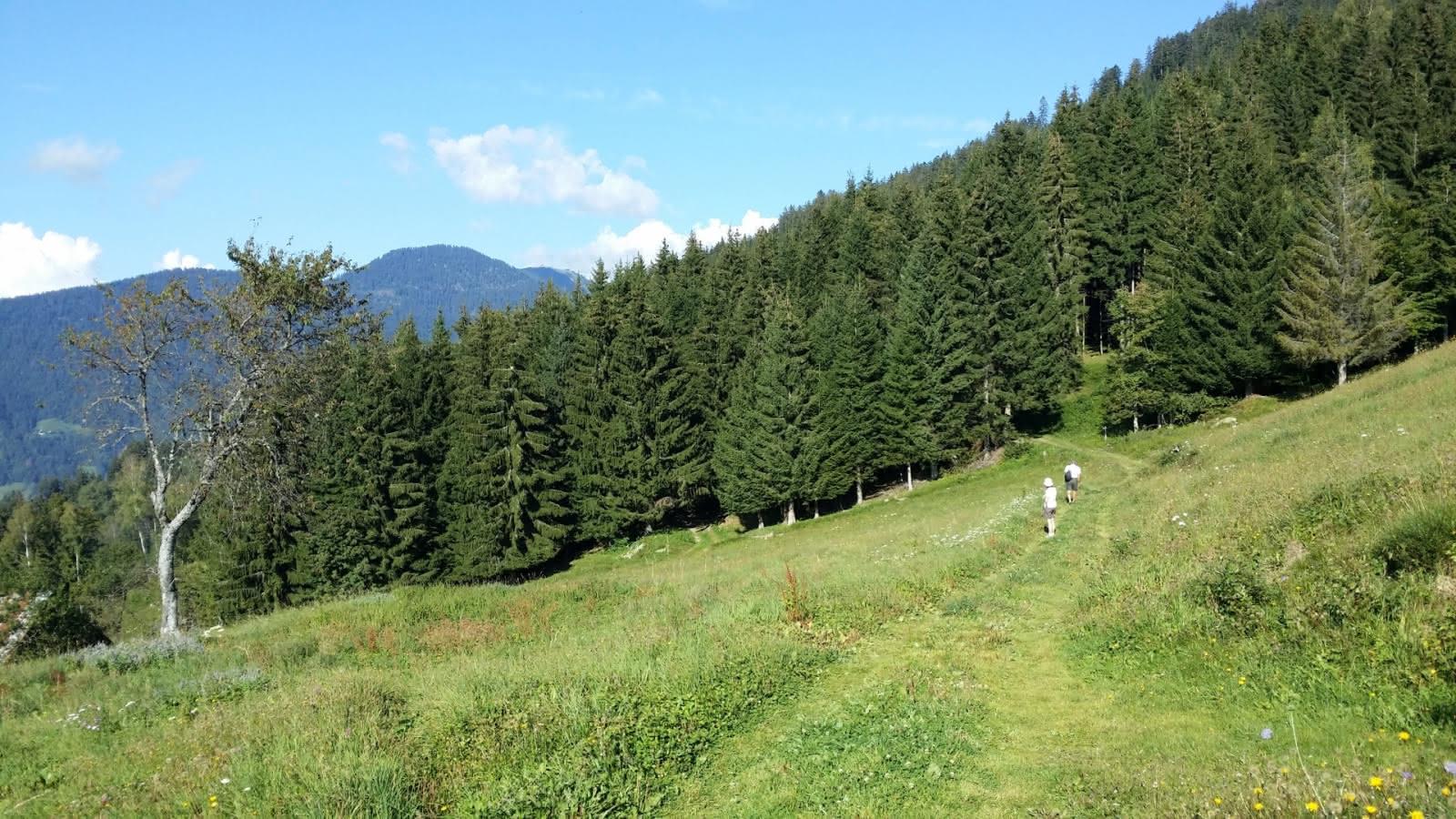 Sentier des Pointières