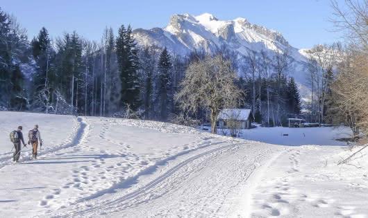 piste de ski nordique
