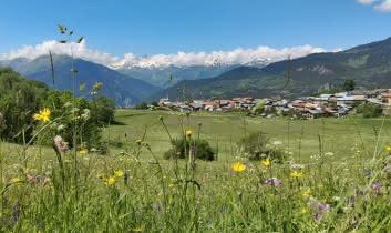 Village été