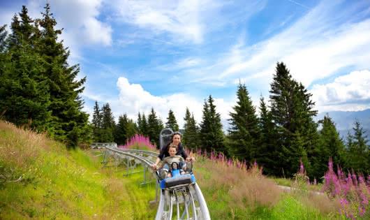 Descente magnifique à travers alpages et forêts
