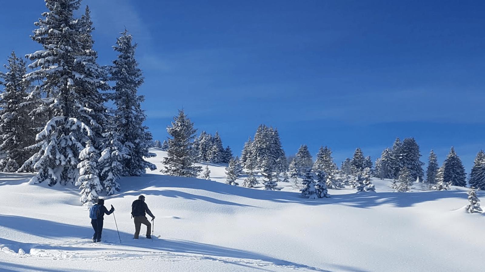 Nouvelle activité neige