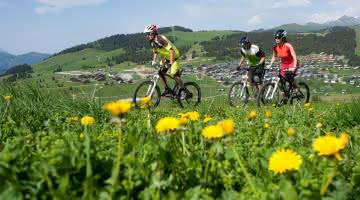 Parcours VTT FFC Les Alpages de Bisanne