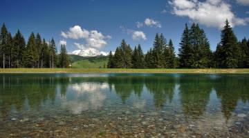 Plan d'eau du Mont Lachat - Site de pèche