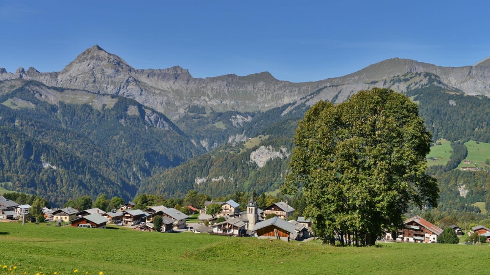 Crest-Voland village