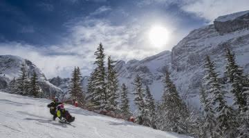 Fauteuil ski avec pilote