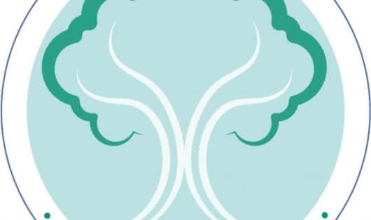 logo réseau BELAM arbre