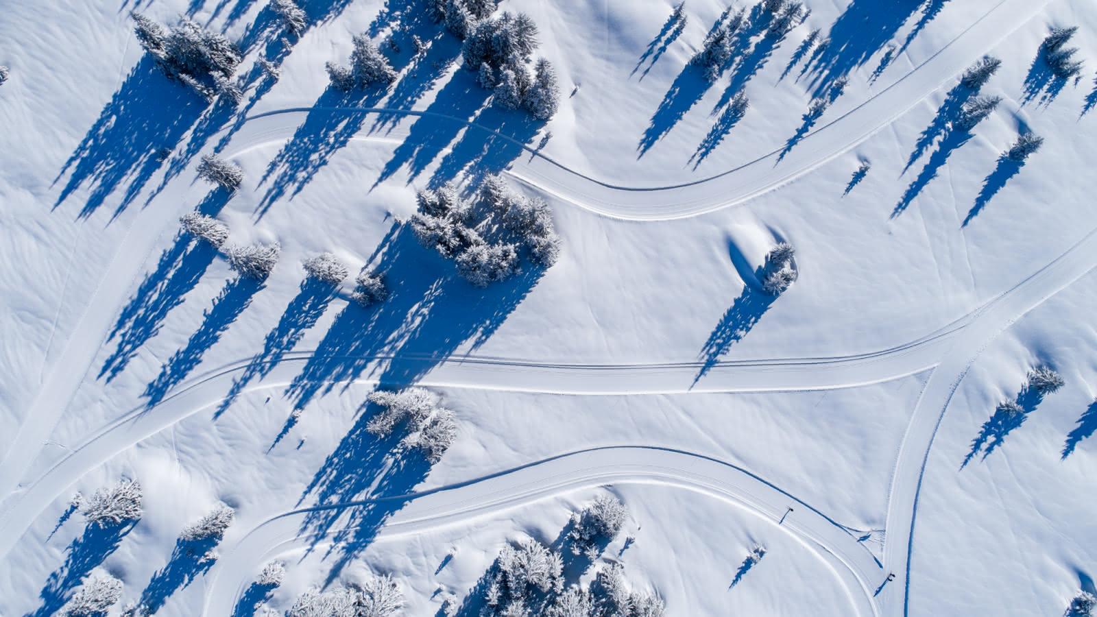 Les pistes s'entrelacent entre plateau dégagés et forêts