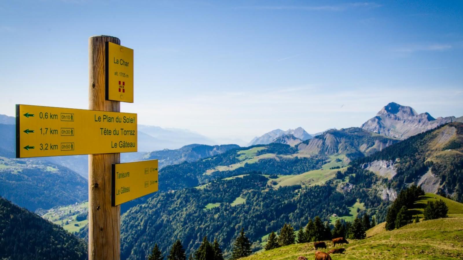 Le Mont Charvin en été depuis la Char