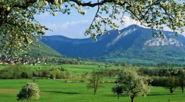 Paysage de l'Albanais