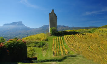 Vignes du Coeur de Savoie