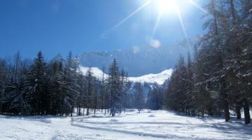 piste de ski de fond et piétons