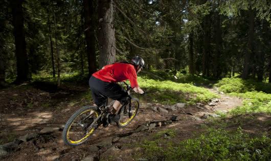 La Bikette, enduro entre le Mont Bisanne et Villard sur Doron