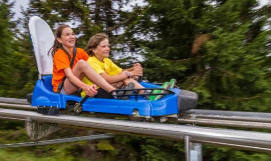 Mountain Twister - Luge d'été