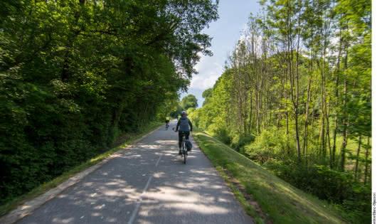 Vélo sur la voie verte autour du lac d'Annecy - Doussard