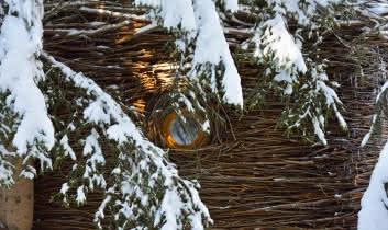 Cabanes entre Terre et Ciel - Cabane Nid, cabane tressée de branche avec son hublot