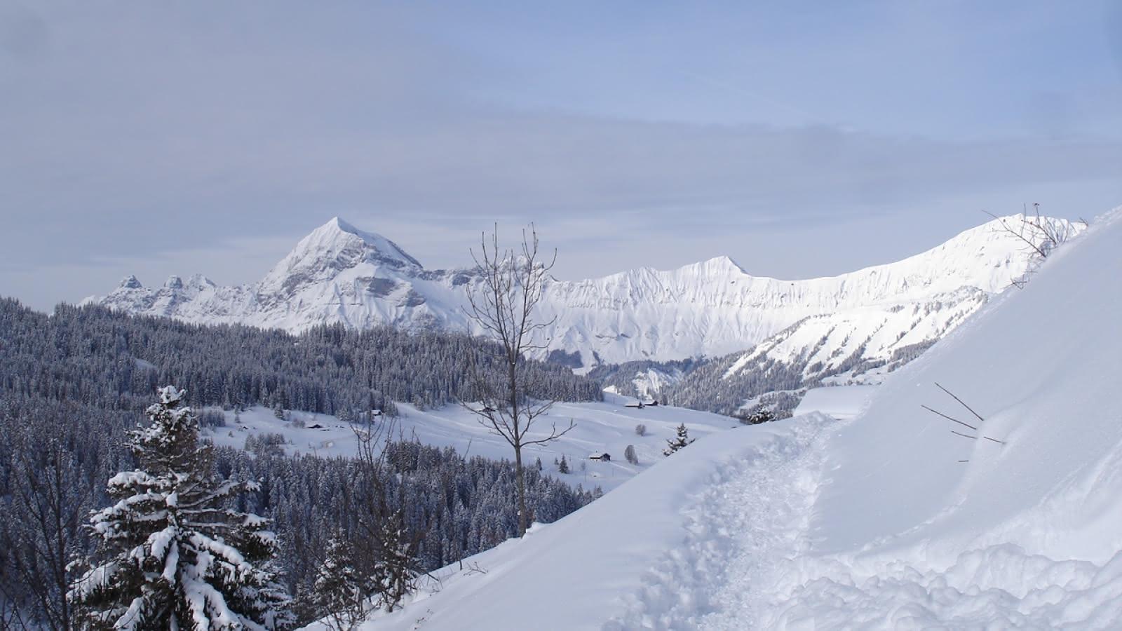 Vue depuis Le Mont-Rond